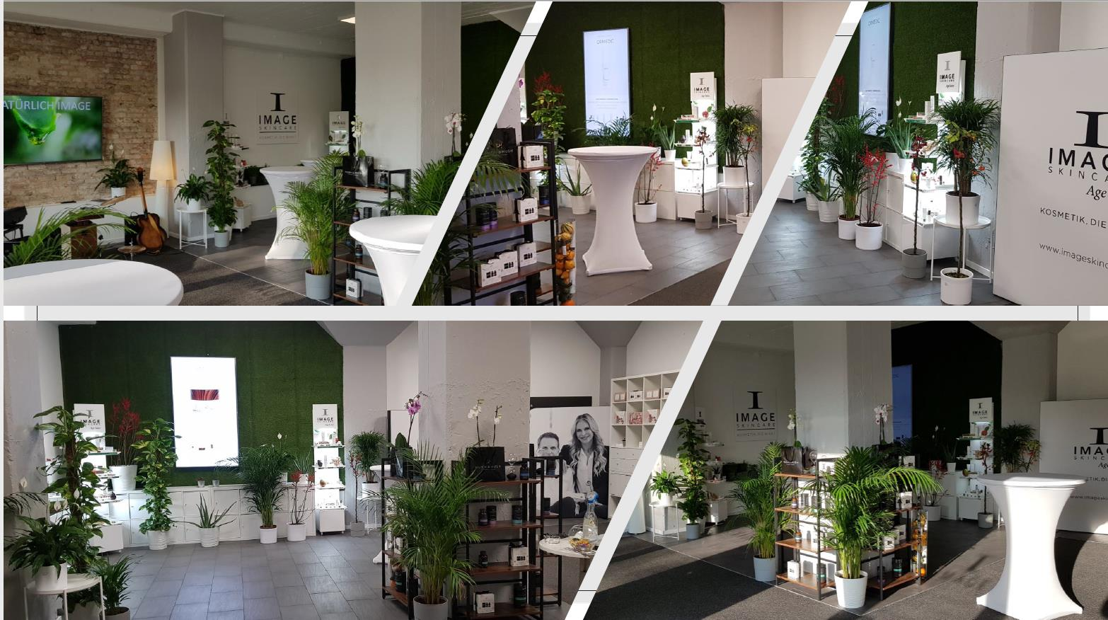 Showroom & Skincare Institute